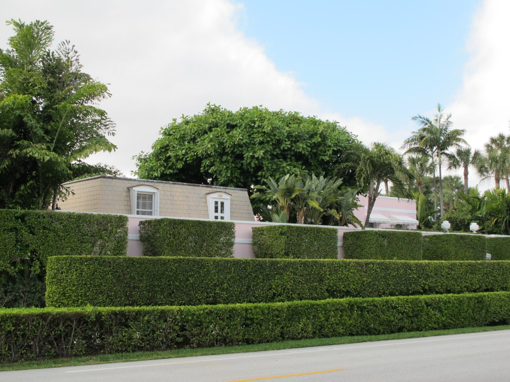 Hedges and crabs palm beach 077 vivian reiss the joy of for Garden hedge designs